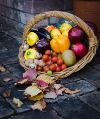 Autumn Harvest - Judy Warburton