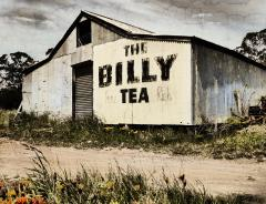 Billy Tea - Dawn Zandstra