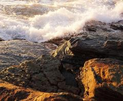 Collaroy Sunrise - Jenny Turtle
