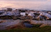 LaPerouse Foreshore - Fran Brew