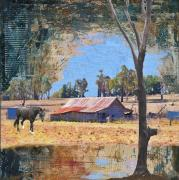 Shed Outback - Tim Collisbird