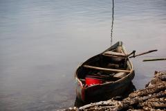 The_Old_Boat - Jenny Turtle